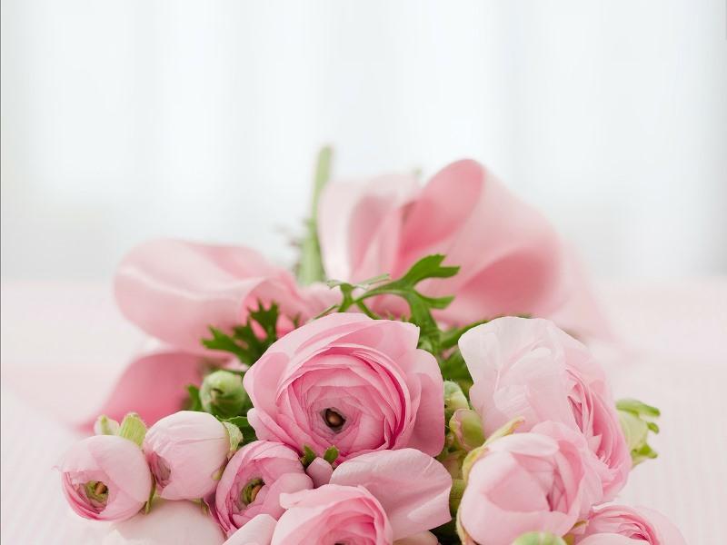 4月1日(日)【大安吉日】今日から始まる新しい門出♪真剣婚活パーティー