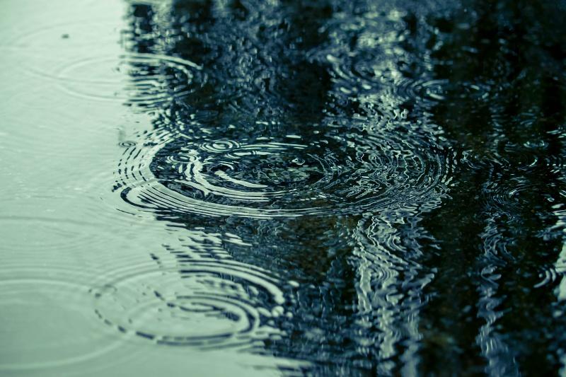 大雨特別警報の中のお見合い、無事にできました。