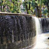 コロナ禍のお勧めデートスポット:新宿中央公園